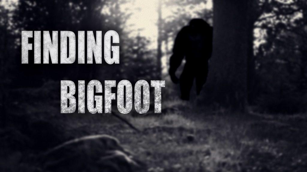 Finding Bigfoot PC Latest Version Game Free Download