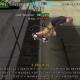 Tony Hawk's American Wasteland PC Version Free Download