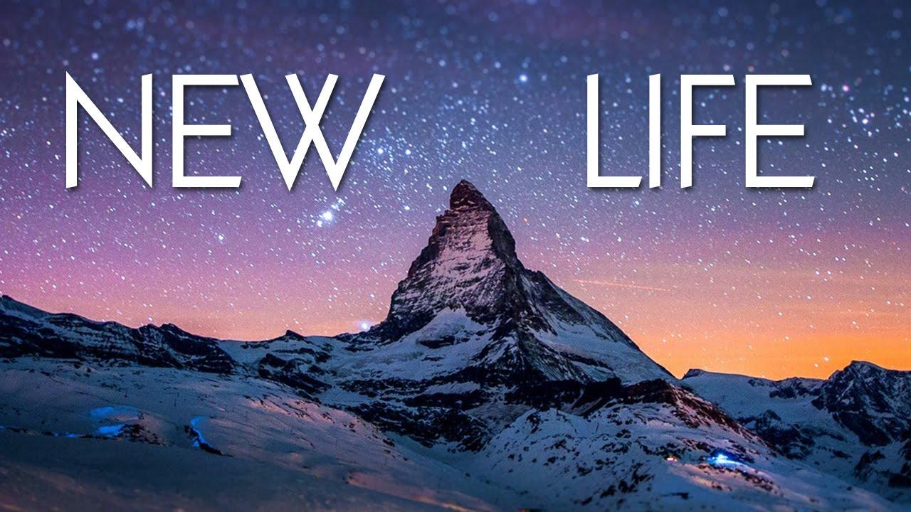 NEW LIFE PC Version Full Free Download