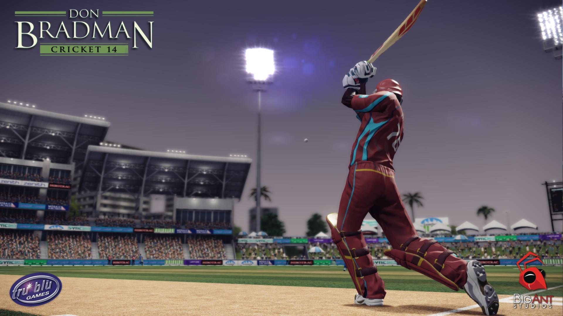 Don Bradman Cricket 14 Free Download Free Download PC windows game